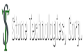 stone-technologies-corp-logo1.png